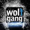 Wolfgang mobile - dual sim smartphones