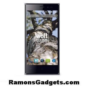 Wolfgang-AT-AS45LTE-Aldi-Smartphone-4.5-inch-dual-sim-4G-Hoesje